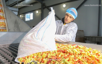 Frozen fruit and vegetable business